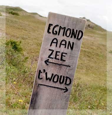 Zeezicht Verhuur Egmond 't woud