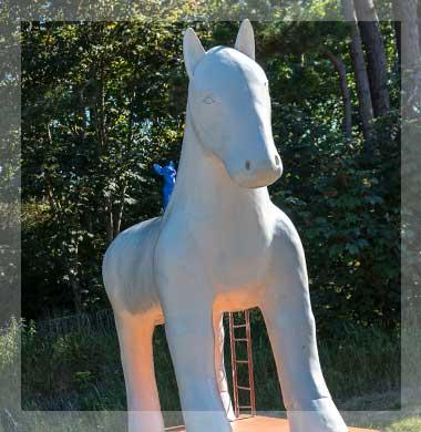 Zeezicht Verhuur Egmond paard van egmond